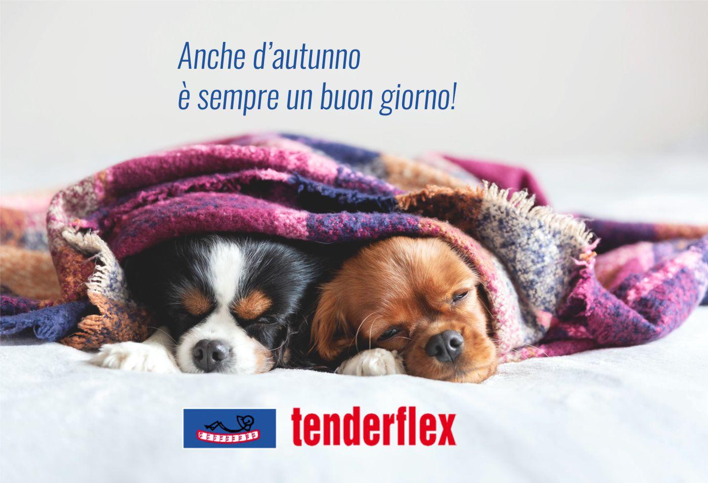 sonni-autunno-tenderflex